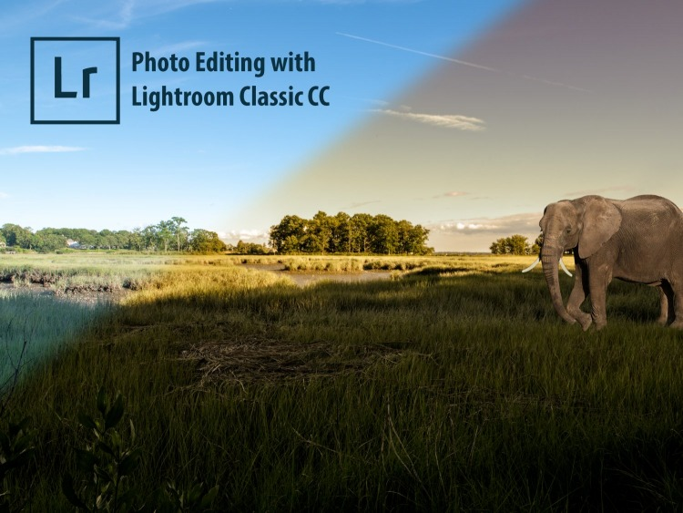 Photo Editing using Adobe Lightroom - 5 Wk Course - Bronxville Adult School